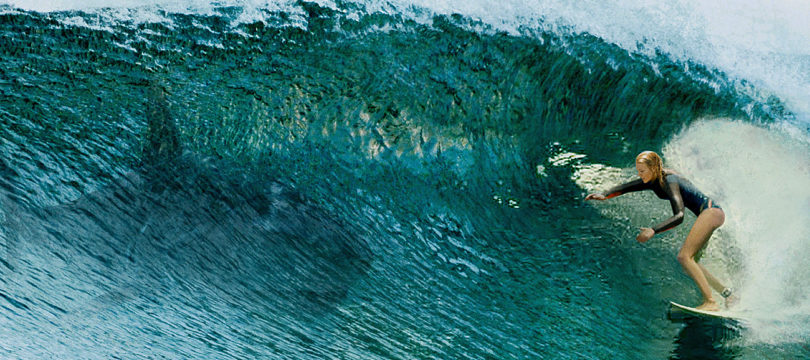 """Sony Pictures' """"The Shallows"""" auf Ultra HD Blu-ray mit englischem Atmos-Ton"""