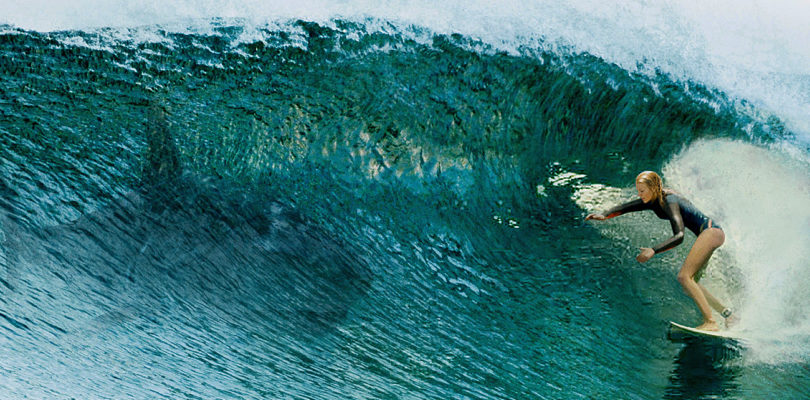 "Sony Pictures' ""The Shallows"" auf Ultra HD Blu-ray mit englischem Atmos-Ton"