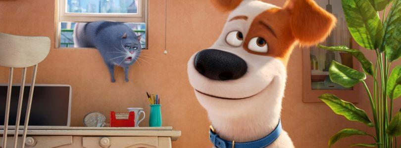 Amazon bietet Blu-rays für 5 Euro an – inklusive 3D-Sound-Titel