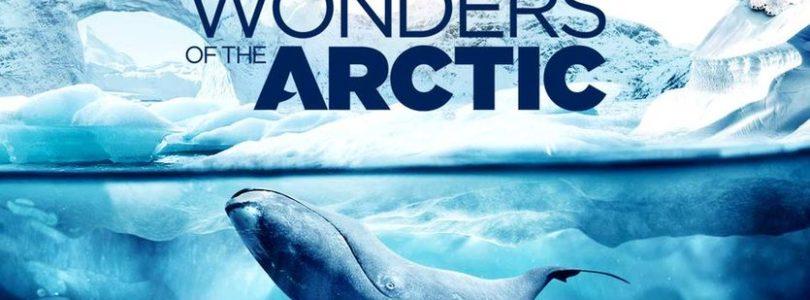 Neue IMAX-Dokumentationen auf Blu-ray und UHD-Blu-ray mit Atmos-Ton