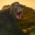 """Kong: Skull Island"": Deutsche Discs ohne Dolby-Atmos-Ton?"