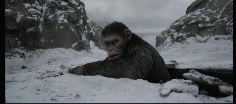 """""""Planet der Affen: Survival"""": Deutsche Ultra HD Blu-ray bietet keinen 3D-Sound"""