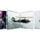 """""""Predator"""": Zavvi bringt britisches 4K-Blu-ray-Steelbook – voraussichtlich mit deutschem Ton (Update)"""