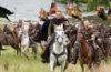 """""""Robin Hood"""": 4K-Blu-ray mit deutschem und englischem DTS:X-Ton"""