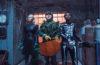 """""""Gänsehaut 2"""" mit englischem Dolby-Atmos-Ton auf 4K-Blu-ray"""