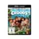 """""""The Croods"""": Ultra HD Blu-ray mit deutschem und englischem DTS:X-Ton"""