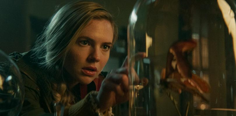 """The Mortuary"": 4K-Blu-ray noch einmal in Standardausführung"