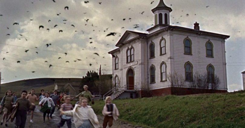 """""""Die Vögel"""" auf 4K-Blu-ray in Steelbook-Edition (Update)"""